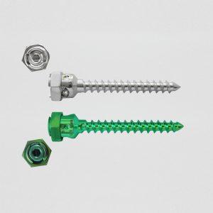 Mono Axial Screw (S.L.)