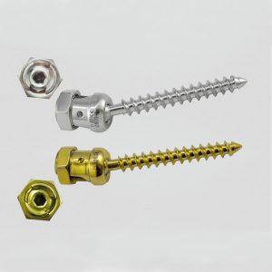 Poly Axial Pedicle Screw (D.L.)
